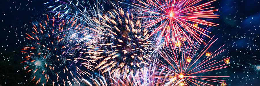 Independence Day Holiday – 2020